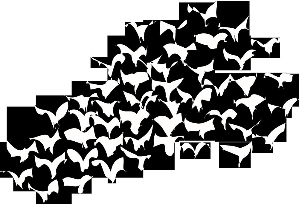 vogelschwarm_weiss_transparent_1000x684px